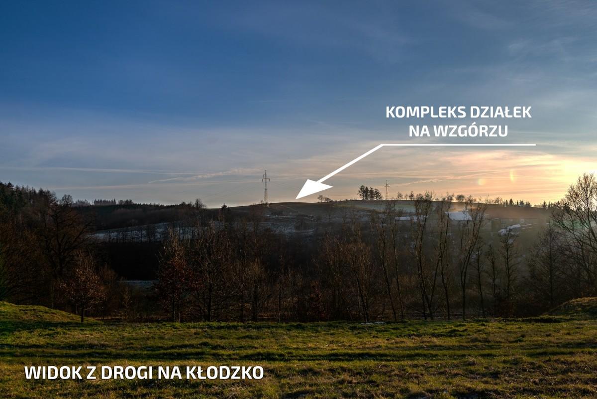 Stary Wielisław